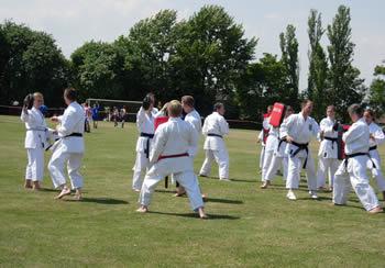 karate display