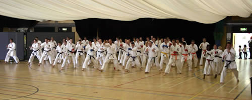 Kumite Training Course